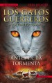 Cover for Antes de la tormenta = Rising storm