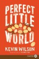 Cover for Perfect little world [Large Print]