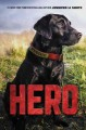 Cover for Hero