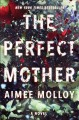 Cover for The perfect mother: a novel