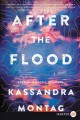 Cover for After the flood: a novel [Large Print]