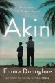 Cover for Akin: a novel [Large Print]
