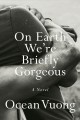 Cover for On Earth we're briefly gorgeous: a novel
