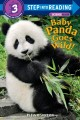Cover for Baby panda goes wild