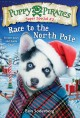Cover for Race to the North Pole