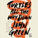 Cover for Turtles All the Way Down