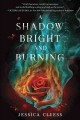Cover for A shadow bright and burning