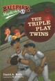 Cover for The triple play twins