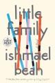 Cover for Little family: a novel [Large Print]