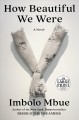 Cover for How beautiful we were: a novel [Large Print]