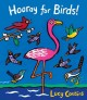 Cover for Hooray for birds!