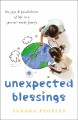 Cover for Unexpected Blessings: The Joys & Possibilities of Life in a Special-Needs F...