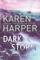 Cover for Dark Storm
