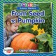 Cover for From seed to pumpkin