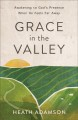 Cover for Grace in the valley: awakening to God's presence when he feels far away