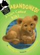 Cover for Abandoned! A lion called Kiki