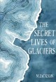 Cover for The secret lives of glaciers