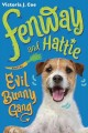Cover for Fenway and Hattie and the Evil Bunny Gang