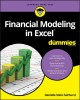 Cover for Financial modeling in Excel for dummies