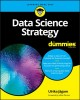 Cover for Data Science Strategy for Dummies