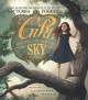 Cover for The girl who fell out of the sky