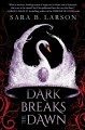 Cover for Dark breaks the dawn