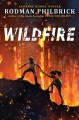 Cover for Wildfire: a novel