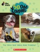 Cover for 50 odd couples: true stories about unlikely animal friendships!
