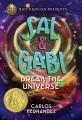 Cover for Sal & Gabi break the universe