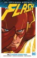 Cover for The Flash. Vol. 1, Lightning strikes twice