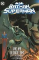 Cover for Batman/Superman. 1, Who are the secret six?