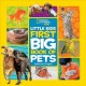 Cover for Little Kids First Big Book of Pets