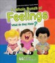 Cover for A whole bunch of feelings: what do they mean?
