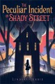 Cover for The peculiar incident on Shady Street