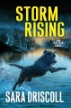 Cover for Storm Rising