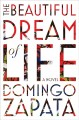 Cover for The beautiful dream of life: a novel