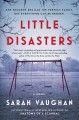 Cover for Little disasters: a novel