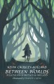 Cover for Between worlds: folktales of Britain & Ireland