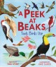 Cover for A Peek at Beaks: Tools Birds Use