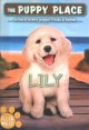 Cover for Lily