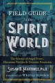 Cover for Field guide to the spirit world: the science of angel power, discarnate ent...
