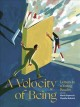 Cover for A velocity of being: letters to a young reader