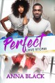 Cover for The Perfect Love Storm