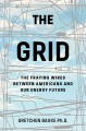 Cover for The grid: the fraying wires between Americans and our energy future