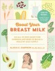 Cover for Boost your breast milk: an all-in-one guide for nursing mothers to build a ...