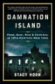 Cover for Damnation Island: poor, sick, mad & criminal in 19th-century New York