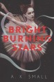 Cover for Bright burning stars