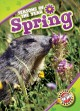 Cover for Spring