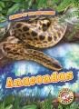 Cover for Anacondas