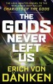 Cover for The gods never left us